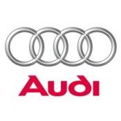 Audi Filtreleri